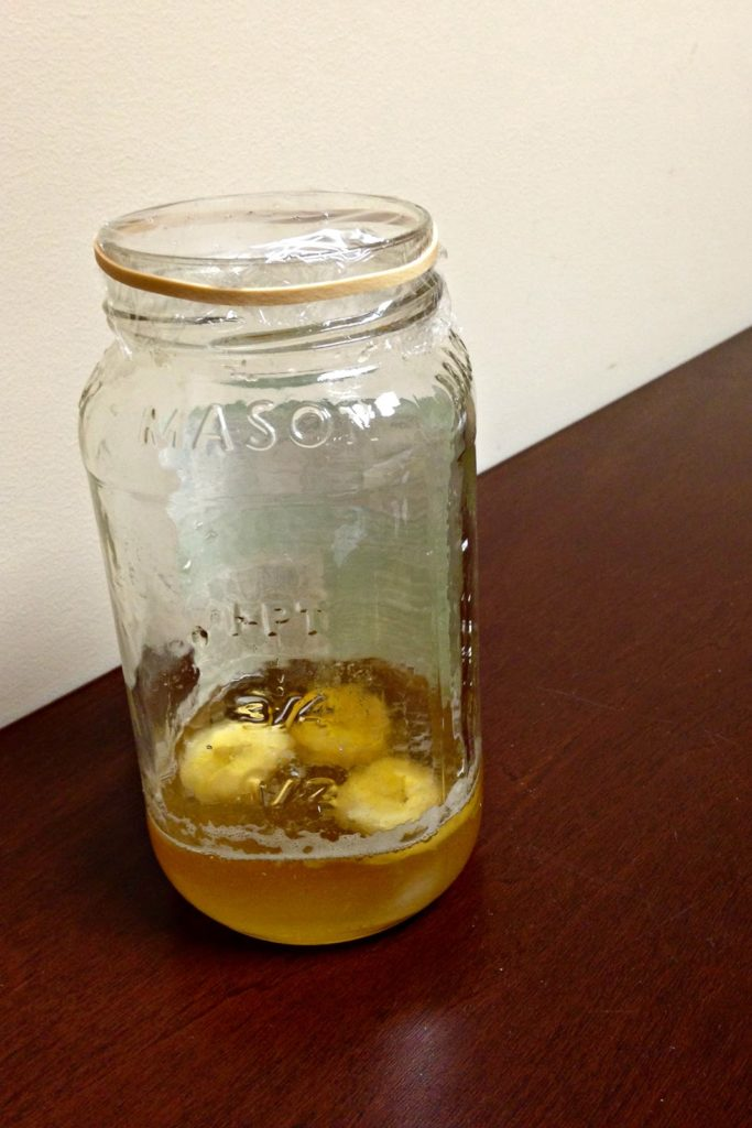 Jar of rotting fruit and apple cider vinegar with sugar and honey covered in cellophane