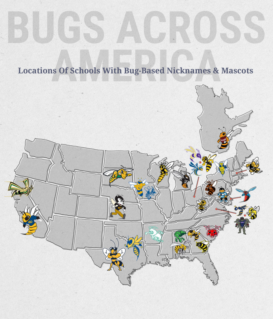 Locations of schools with bug or insect-based nicknames and mascots.