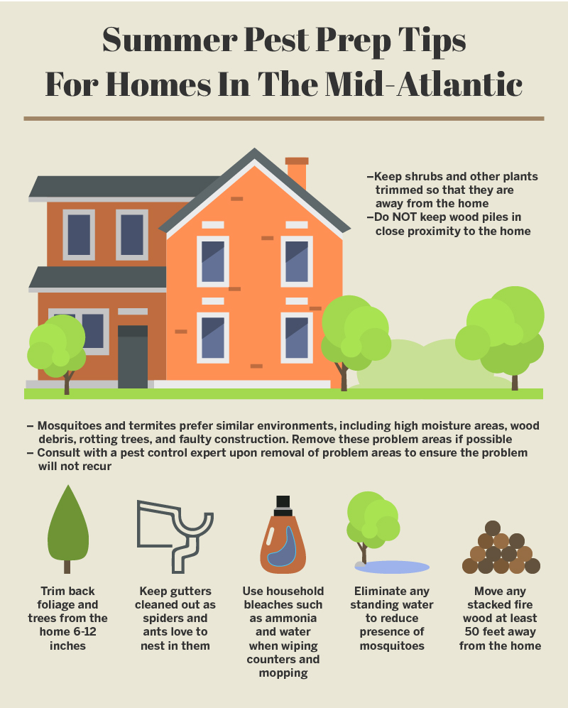 Summer Pest Prep Tips Mid-Atlantic